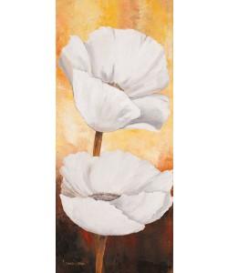 Lenna Lotus, White flowers I
