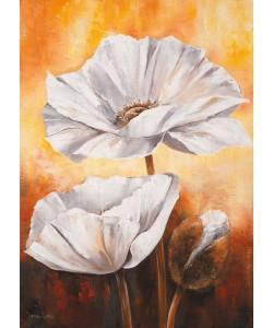 Lenna Lotus, White flowers II