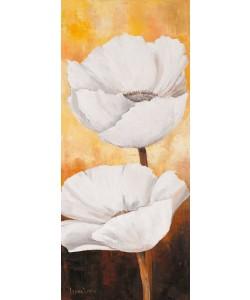 Lenna Lotus, White flowers III