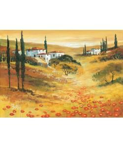 Burgy, Poppies in Tuscany I