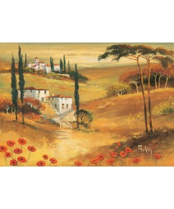 Burgy, Poppies in Tuscany II