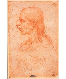 Leonardo da Vinci, Grotesker Kopf einer alten Frau im Profil