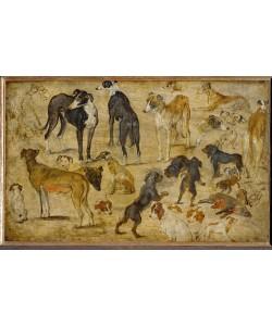 Jan Brueghel der Ältere, Tierstudien