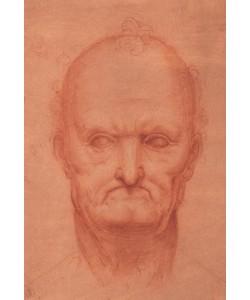 Leonardo da Vinci, Kopfstudie eines alten Mannes