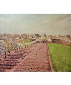 Gustave Caillebotte, Pommiers en fleurs, coteau de Colombes