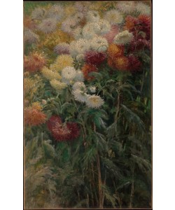 Gustave Caillebotte, Chrysanthemums in the Garden at Petit-Gennevilliers
