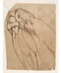 Michelangelo Buonarroti, Anatomical Study of a Knee