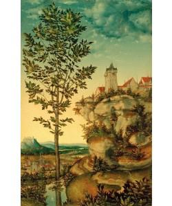 Lucas Cranach der Ältere, Landschaft
