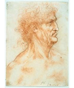 Leonardo da Vinci, Profilstudie eines älteren Mannes mit Lorbeerkranz