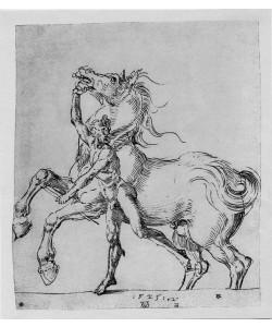 Albrecht Dürer, Nackter Mann mit Pferd