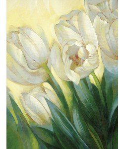 Janusz Remi, Weiße Tulpen 1