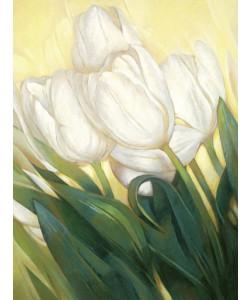 Janusz Remi, Weiße Tulpen 3