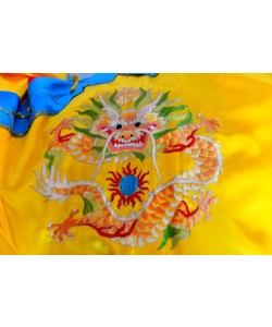 Hady Khandani, EAST CHINESE DRAGON ON CLOTH