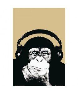 Steez, Monkey with Headphone