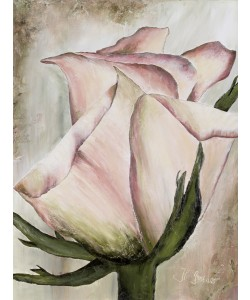 Heidi Gerstner, Rose in Altrosa
