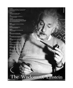 Albert Einstein, Zitate Einsteins, The Wisdom of Einstein