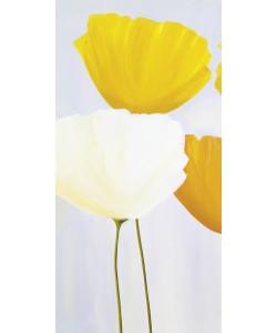 Sonja Kaminski, Fresh Flowers (I)