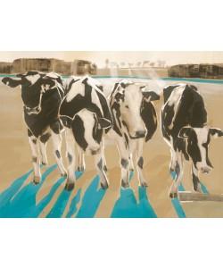 Daniela Lüers, Kühe im Gegenlicht