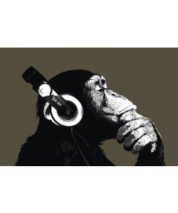 Leinwandbild Unbekannt - The Chimp Stereo