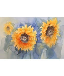 Egle, sunflowers on green background watercolor
