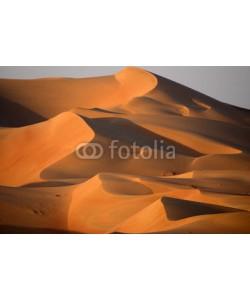 forcdan, Dunes in Abu dhabi