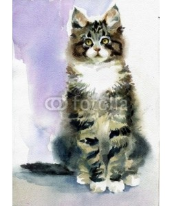 Nadiia Starovoitova, Watercolor Animal Collection: Gray Cat