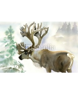 Nadiia Starovoitova, Moose in winter forest