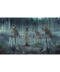 konradbak, Attractive female trainer with the tigers