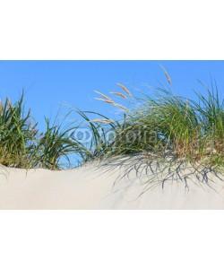 Kara, Gräser auf Düne