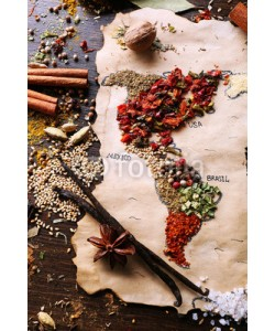 Africa Studio, Map of world made from different kinds of spices