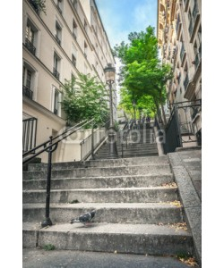 adisa, Montmartre staircase in Paris