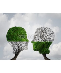 freshidea, Complement Each Other