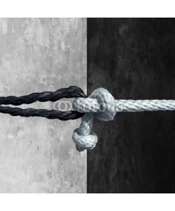 freshidea, Racial Unity