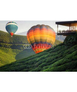 anekoho, Balloon and Viewpoint on the top of cameron highland