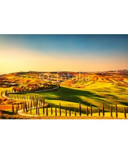stevanzz, Tuscany countryside panorama, rolling hills and fields Italy