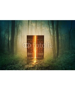 kevron2001, Glowing door in forest