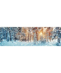 candy1812, Pine trees covered with snow on frosty evening. Beautiful winter panorama at snowfall