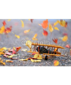 Alaskajade, Autumn leaves blowing in the wind across a yellow model airplane