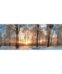 Smileus, Winter Landschaft: Zauberhafter Sonnenuntergang im Wald