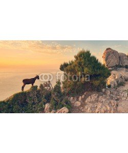 Jenny Sturm, romantischer Abend an Mallorcas Küste