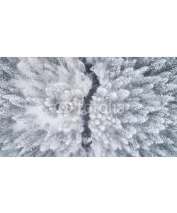 raland, Aerial view of the forest and river at winter. The trees are covered with snow