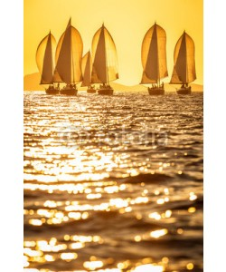 Pavel, Sailing boats with spinnakers racing on open sea during sunset
