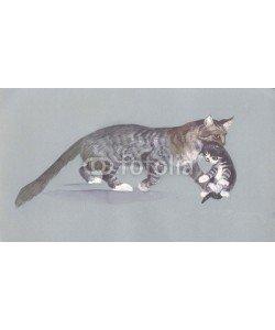 Nadiia Starovoitova, Watercolor Animal Collection: Cat