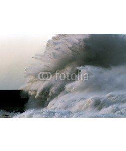 Zacarias da Mata, Ocean Waves
