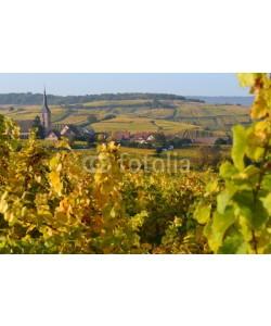 ajking, Alsace im Herbst