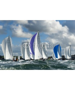 synto, group yacht at regatta