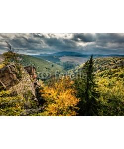 ferkelraggae, wilder Harz, Herbst, Brocken