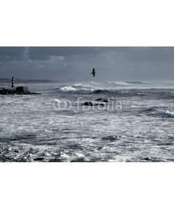 Zacarias da Mata, Blue winter seascape