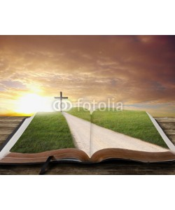 kevron2001, Open Bible with road.