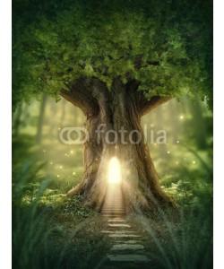 Elena Schweitzer, Fantasy tree house